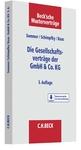 Die Gesellschaftsverträge der GmbH & Co. KG